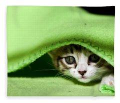 Peeking Fleece Blanket
