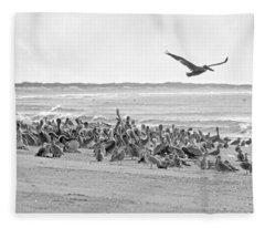 Pelican Convention  Fleece Blanket