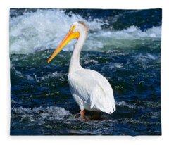 Pelican Portrait Fleece Blanket