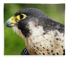 Peregrine Falcon Fleece Blanket