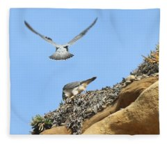 Peregrine Falcons - 2 Fleece Blanket