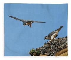 Peregrine Falcons - 6  Fleece Blanket