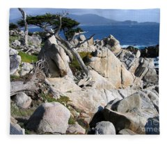 Pescadero Point Fleece Blanket