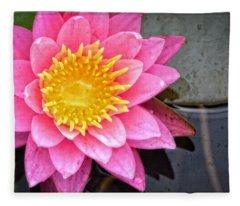 Pink Lotus Flower - Zen Art By Sharon Cummings Fleece Blanket