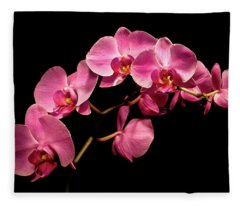 Pink Orchids 3 Fleece Blanket