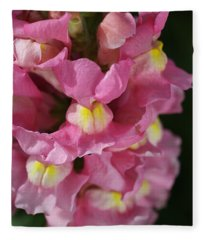 Pink Snapdragon Flowers Fleece Blanket