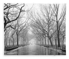 New York City - Poets Walk Central Park Fleece Blanket