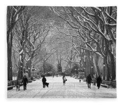 New York City - Poets Walk Winter Fleece Blanket