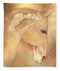 Poll Meet Atlas Axis Fleece Blanket