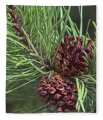 Ponderosa Pine Cones Fleece Blanket