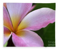 Pop Of Pink Plumeria Fleece Blanket