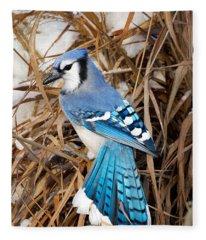 Portrait Of A Blue Jay Fleece Blanket