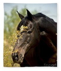 Portrait Of A Thoroughbred Fleece Blanket