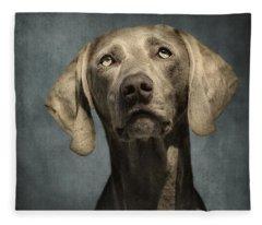 Weimaraner Fleece Blankets