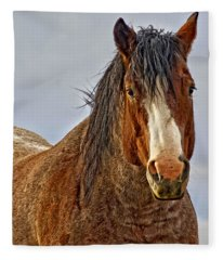 Winter's Edge Fleece Blanket