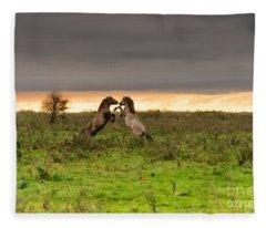 Prancing Horses At Sunset Fleece Blanket