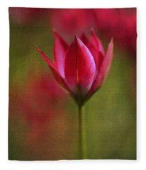 Presence Fleece Blanket