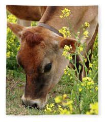 Pretty Jersey Cow Square Fleece Blanket
