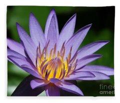 Pretty Purple Petals Fleece Blanket