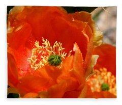 Prickly Pear In Bloom Fleece Blanket