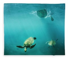 Pro Sup Athlete Paddles With The Turtles Fleece Blanket