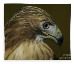 Profile Fleece Blanket