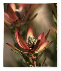 Protea  Fleece Blanket