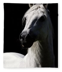Proud Stallion Fleece Blanket