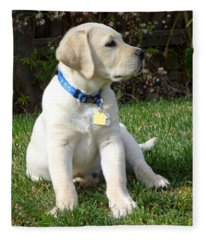 Proud Yellow Labrador Puppy Fleece Blanket