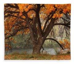 Provo Autumn #1 Fleece Blanket