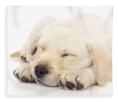 Puppy Sleeping On Paws Fleece Blanket