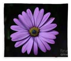 Purple African Daisy Fleece Blanket