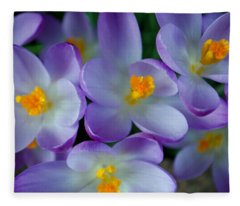 Purple Crocus Gems Fleece Blanket