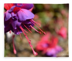 Purple Fuchsia Fleece Blanket