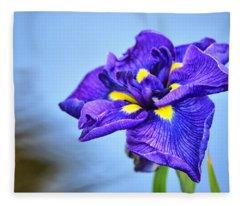 Purple Pond Iris Fleece Blanket