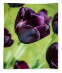 Queen Of The Night Black Tulips Fleece Blanket