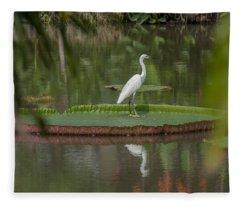 Queen Victoria Water Lily Pad With Little Egret Dthb1618 Fleece Blanket