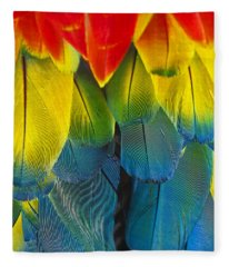 Quillicious... Fleece Blanket