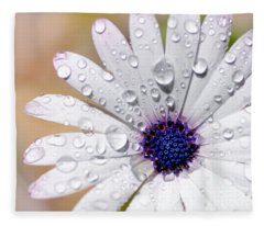 Rain Soaked Daisy Fleece Blanket
