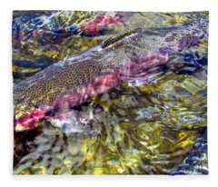 Rainbow Trout Fleece Blanket