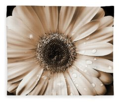 Raindrops On Gerber Daisy Sepia Fleece Blanket