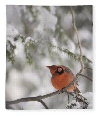 Red Alert Fleece Blanket