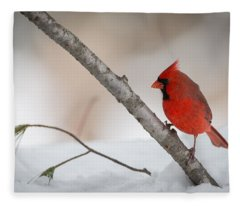 Red And White Fleece Blanket