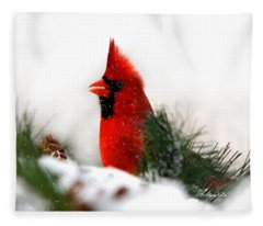 Red Cardinal Fleece Blanket