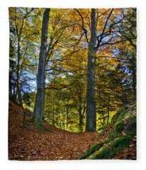 Red Carpet In Reelig Glen During Autumn Fleece Blanket