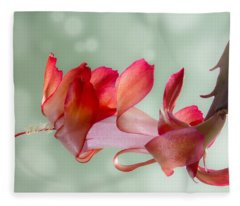 Red Christmas Cactus Bloom Fleece Blanket