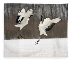 Red-crowned Cranes Courting Fleece Blanket