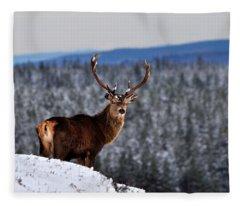 Red Deer Stag Fleece Blanket