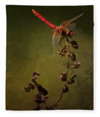 Red Dragonfly On A Dead Plant Fleece Blanket