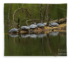 Red-eared Slider Turtles Fleece Blanket